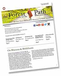 The_Forest_Path_Issue_2-1